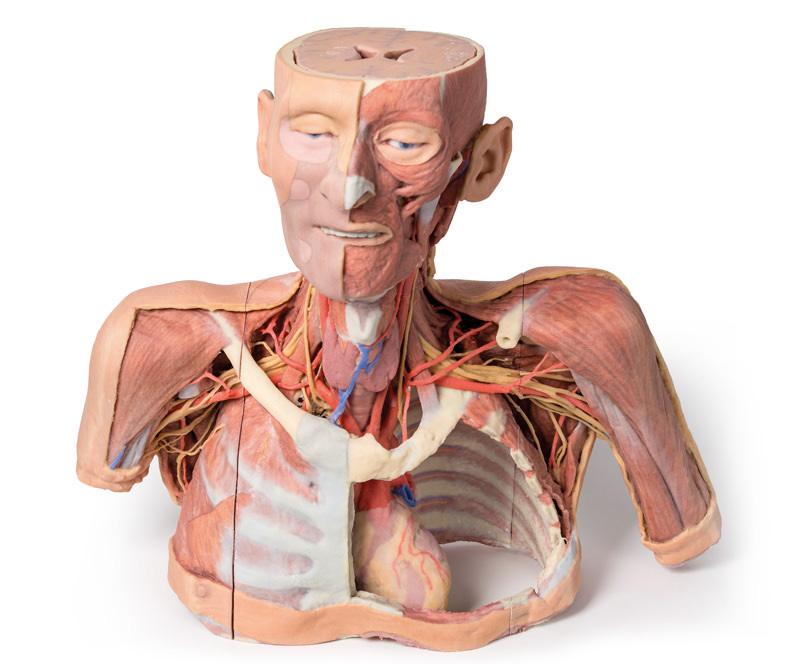 medicalsupplies-medstore