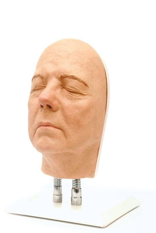 anatomicalmodles-medstore.ie