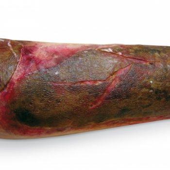 anatomicalmodesl-medstoe.ie